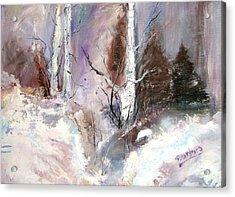 Winter Birches Acrylic Print by Barbara Cole