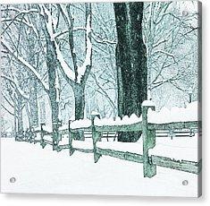 Winter Blues Acrylic Print by John Stephens