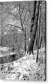 Acrylic Print featuring the photograph Winter By A Pennsylvania Stream by A Gurmankin