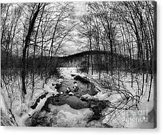 Winter Creek Acrylic Print by Mark Miller