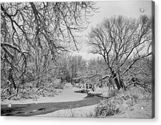 Winter Creek In Black And White Acrylic Print by James BO  Insogna
