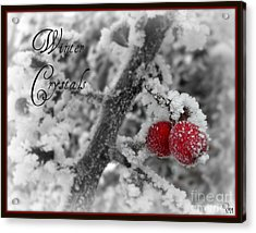 Acrylic Print featuring the photograph Winter Crystals On Red by Heidi Manly