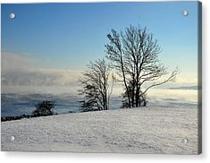 Acrylic Print featuring the photograph Winter Day by Randi Grace Nilsberg