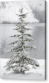 Winter Decor Acrylic Print