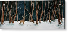 Winter Deer Acrylic Print