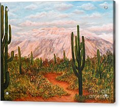 Acrylic Print featuring the painting Winter Desert At Sunset by Judy Filarecki