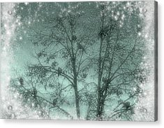Winter Doves Acrylic Print by Diane Alexander