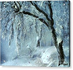 Winter Dreams Acrylic Print by Dragica  Micki Fortuna