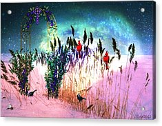 Winter Dreams Acrylic Print by Mary Anne Ritchie