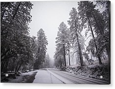 Winter Driven Acrylic Print by Anthony Citro
