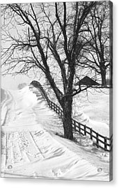 Winter Driveway Acrylic Print by Wendell Thompson