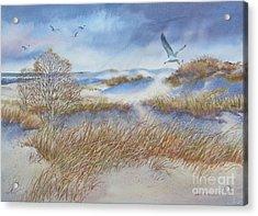 Winter Dune Acrylic Print by Karol Wyckoff
