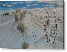 Winter Dune Acrylic Print