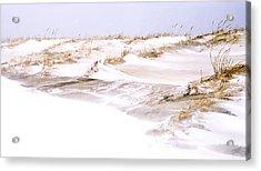 Winter Dunes Acrylic Print by William Walker