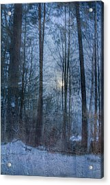 Winter Early Morning Setting Moon Acrylic Print by Betty  Pauwels