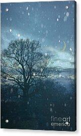 Winter Evening Acrylic Print by Jan Bickerton