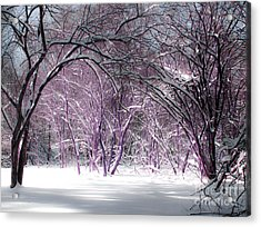 Winter Faeries Acrylic Print by Barbara McMahon