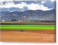 Winter Farm In California Acrylic Print