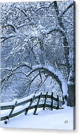 Acrylic Print featuring the photograph Winter Fence by Alan L Graham