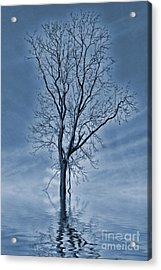Winter Floods Painting Acrylic Print by John Edwards