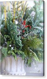 Winter Floral Arrangement Acrylic Print by Birgit Tyrrell