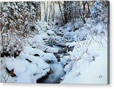 Winter Flow Acrylic Print by Darryl Wilkinson