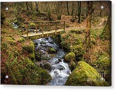 Winter Footbridge Acrylic Print by Adrian Evans