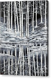 Winter Forest Acrylic Print by Premierlight Images