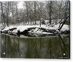 Winter Forest Series 2 Acrylic Print