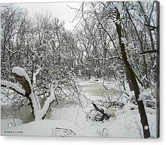 Winter Forest Series 3 Acrylic Print