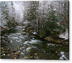 Winter Fresh Acrylic Print by Michael Eingle