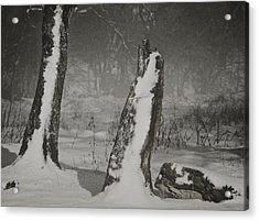 Winter Gate Acrylic Print by Odd Jeppesen