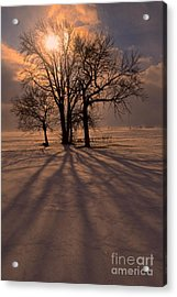Winter Glory Acrylic Print by Tim Good