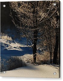 Acrylic Print featuring the photograph Winter Glow by Mim White