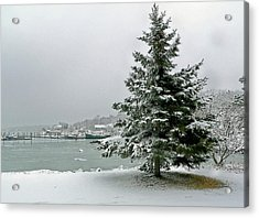 Winter Harbor Scene Acrylic Print by Janice Drew
