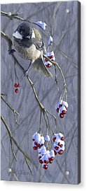 Winter Harvest 1 Chickadee Painting Acrylic Print