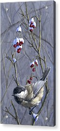 Winter Harvest 2 Chickadee Painting Acrylic Print