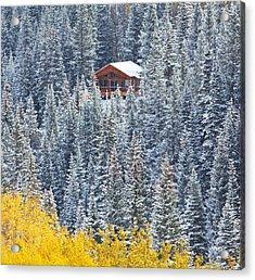 Winter Hideaway Acrylic Print by Darren  White