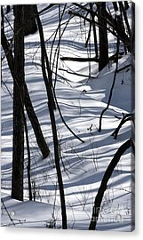 Winter Hillside Acrylic Print
