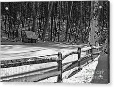 Winter Hut In Black And White Acrylic Print by Paul Ward