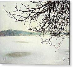 Winter Impressions IIb Acrylic Print