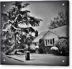 Winter In Black And White Acrylic Print by Mikki Cucuzzo