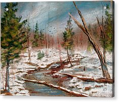 Winter In Canane Acrylic Print by Bruce Schrader