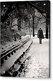 Winter In Central Park Acrylic Print by Madeline Ellis