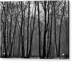 Winter In Pennsylvania Acrylic Print by Benjamin Yeager