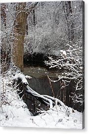 Winter In Rotary Park 2 Acrylic Print