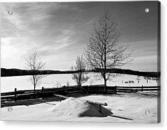 Winter In Roztocze Acrylic Print by Tomasz Dziubinski