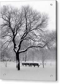 Winter In The Park Acrylic Print by Nina Bradica
