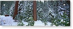 Winter In The Sierra Mountains Acrylic Print by Panoramic Images