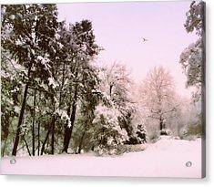 Winter Woodland  Acrylic Print by Jessica Jenney